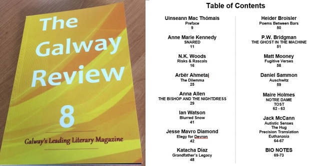 The Galway Review 8 logo